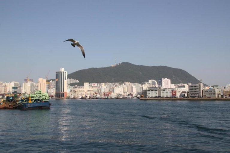 Voyage en Corée vu depuis la mer de la ville de Busan et son port circuit de routedelacoree.com