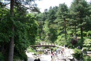 Circuit Corée du sud le jardin ile de Jeju vacance routedelacoree.com