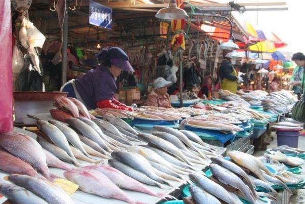 Séjour en Corée découverte du marché Jagalchi à Busan circuit routedelacoree.com